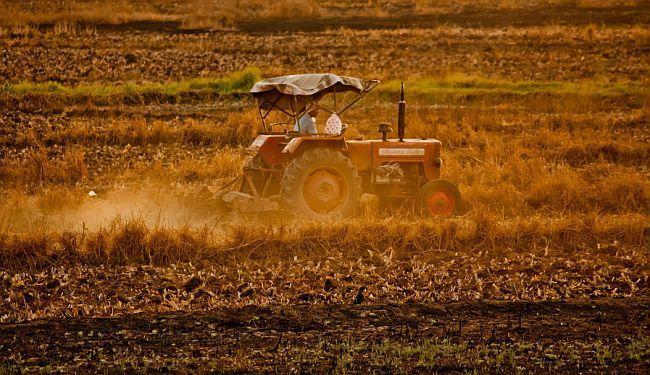 25 GODINA POLAGANOG UMIRANJA: Što dobrog malim poljoprivrednicima može donijeti Agrokorov pad?