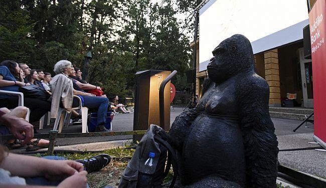 """SKRIVENA PROJEKCIJA: Ta divna stvorenja gledala su """"Ta divna stvorenja"""" u Zoološkom vrtu"""