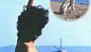 Naše razglednice: Enti pasa dalmatinca!