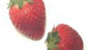 Grlom u jagode