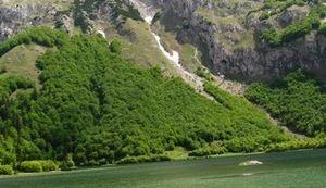 BITKA ZA SUTJESKU 2014. Bosna i Hercegovina na rubu da izgubi najstariji nacionalni park