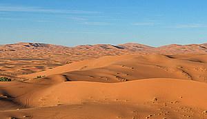 KANTUNAL MARKA POGAČARA: Čaj u Sahari
