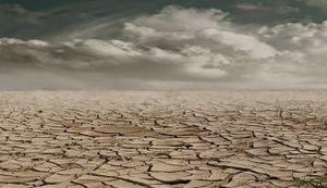 PRIČA IZ ZAGREBNOG ŽIVOTA JOSIPA MLAKIĆA: Miris zemlje