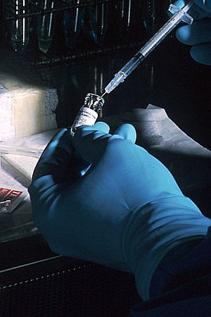 BOJNO POLJE: O cjepivima, seljacima i debilima za početnike