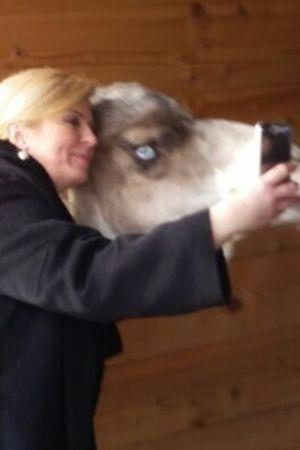 FOTO DANA: Predsjednica Kolinda Grabar Kitarović opalila selfie s devom
