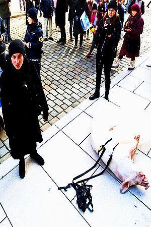 SLOVENSKA UMJETNICA ŠOKIRALA LJUBLJANU: U čemu je problem? Takvu svinju imate kod kuće