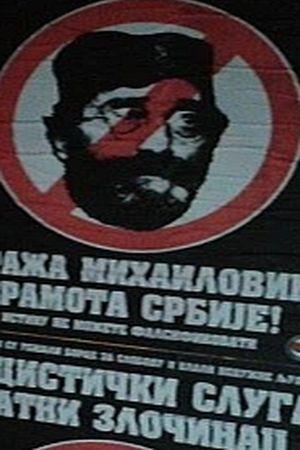 """NOVI SAD U NOVOM RUHU: """"Nacistički sluga, ratni zločinac, Draža Mihailović - sramota Srbije"""""""