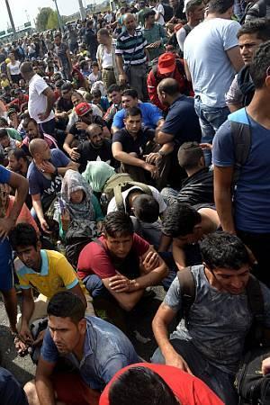 KSENOFOBNE LAŽI I PRIJEVARE: Zašto teza da su među izbjeglicama prikriveni teroristi baš i ne pije vodu