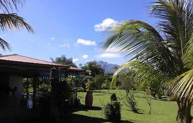 Vrt Martinik
