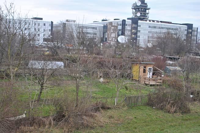 Urbani vrt Prisavlje