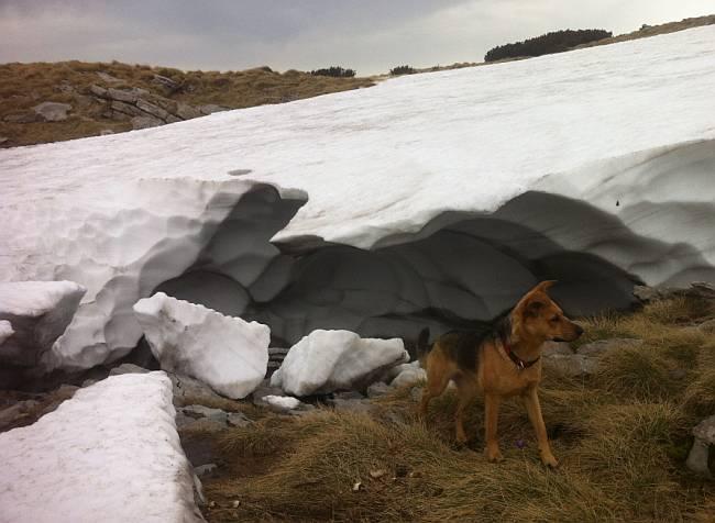 Snijeg Velebit