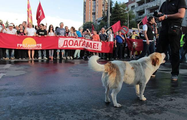 Prosvjedi Makedonija