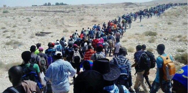 Eritrejske izbjeglice u maršu preko Sinaja