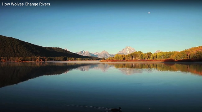nacionalni park yellowstone