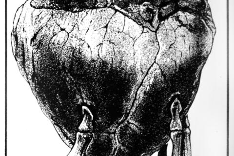 (I)LUSTRACIJA HRVATSKE: Zavirite u mračno ogledalo Hrvatske