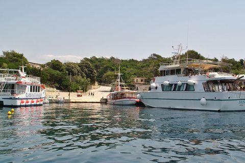 Otok, kažu, posjeti 100.000 turista godišnje