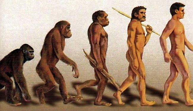 POVRATAK U DOBA INKVIZICIJE: Doktori znanosti i akademici potpisuju peticiju za izbacivanje teorije evolucije iz škola
