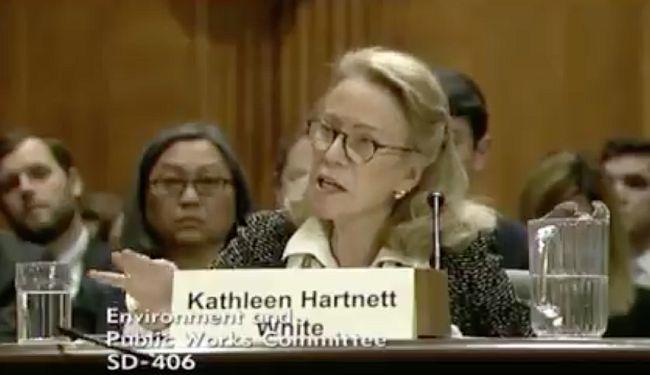 """KLIMATSKI SKEPTICI: Trumpovoj kandidatkinji za pitanja zaštite okoliša """"fali informacija"""" kako nastaje zagađenje"""