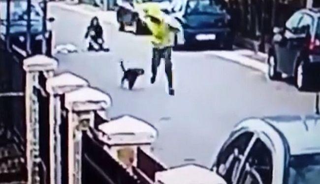 KAKO JE MEDO POSTAO HEROJ PODGORICE: Ulični pas obranio djevojku ujedajući razbojnika za guzicu