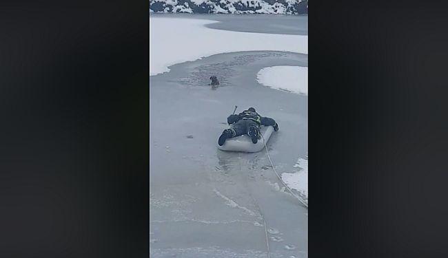 HRABRI ČIN VUKOVARSKIH VATROGASACA: Na zračnom madracu izvukli psa iz ledene rijeke