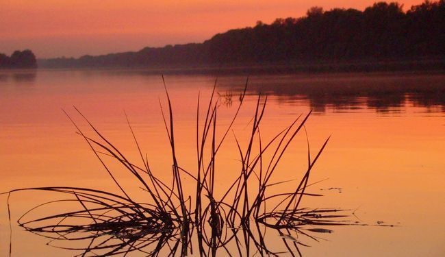 """HRVATSKA RIJEKA """"SUPERBAKTERIJA"""": Nitko ne kontrolira zagađenje rijeka farmaceutskim otpadom"""