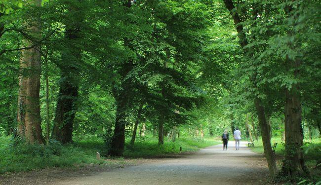 ZAGREB PRIDE: Nasilnička banda u zagrebačkim parkovima serijski napada gay ljude
