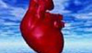 Srce u ruci