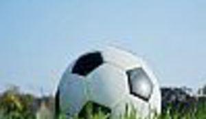 Hrvatska nogometna ljiga