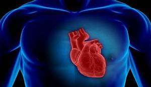 VIKTOR IVANČIĆ: Srce i zakon