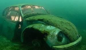MAJSTOR PODVODNE FOTOGRAFIJE: Pogledajte što se sve krije u morskim dubinama