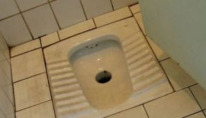 PRIČAJMO O GOVNIMA: Sretan vam Svjetski dan WC-a, recite mu - hvala!