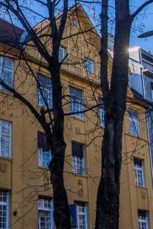 IZOLIRANI I NEVIDLJIVI: Iza zidova psihijatrija i domova jačate ljudsku patnju