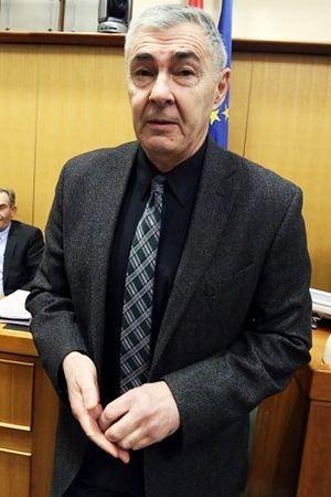 GENERAL S NEONACISTIMA: Kako je Željko Glasnović konačno stigao kući