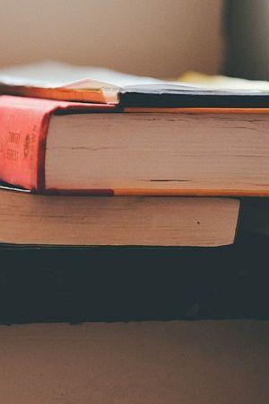 U RETROVIZORU: Godina je bila oskudna, ali ove je knjige vrijedilo pročitati