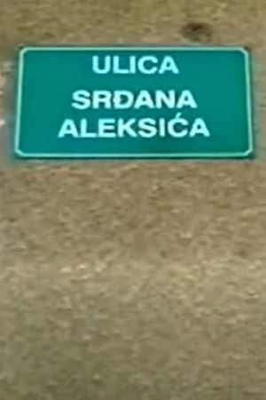 RELATIVIZACIJA U REŽIJI SDA: Kome smeta ulica Srđana Aleksića?