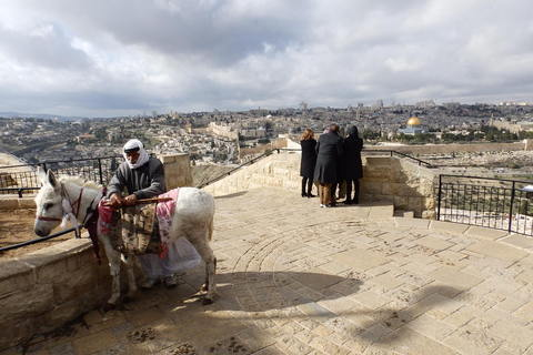 Na vidikovcu na Maslinskoj gori sa kojeg puca pogled na stari Jeruzalem ordiniraju maskote grada, palestinski čiča sa svojom magaricom koja guta bakšiš